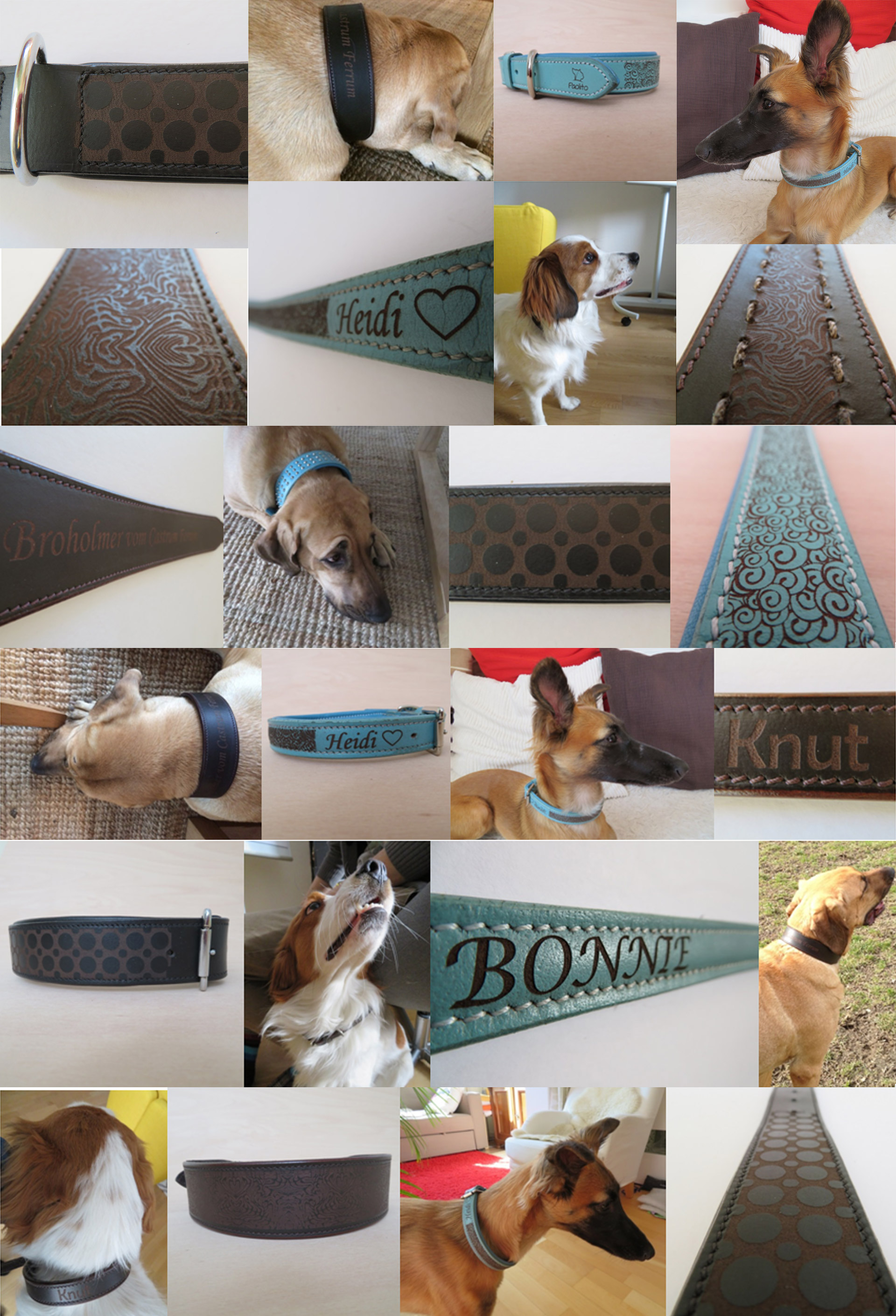 Hundehalsbänder mit Gravur bei paolito.com